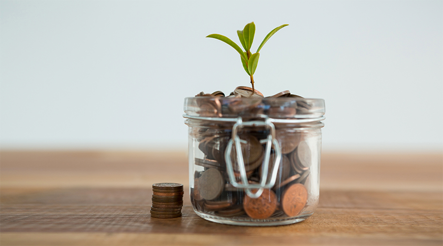 plant growing out of coins jar NY67LEM 900x500px